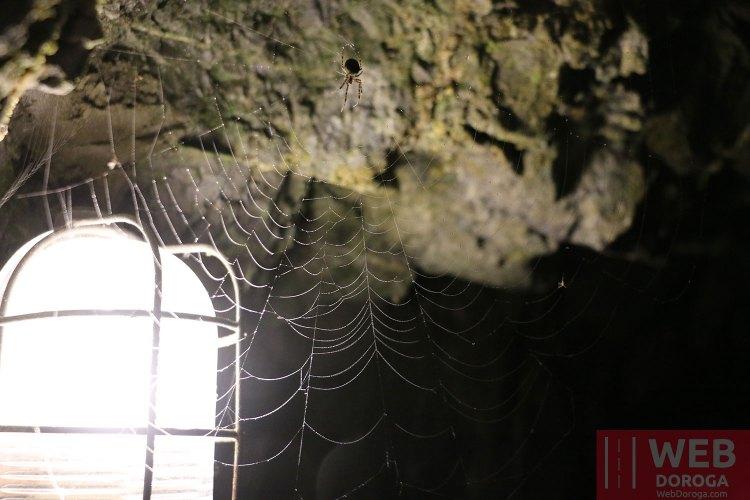 Местный житель в туннеле Aareschlucht