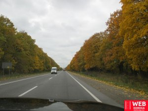 Дорога в Косино