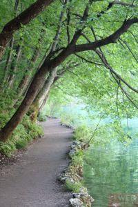 Пешеходные дорожки вдоль озер