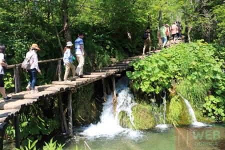 Пешеходные дорожки в Плитвицких озерах над мелкими водопадами