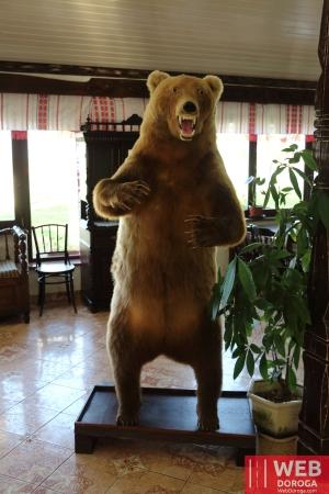 Медведь в ресторане Косино