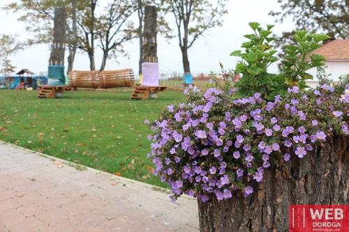 Веревочный парк для детей в Косино