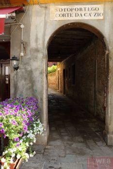 Цветы в Венеции