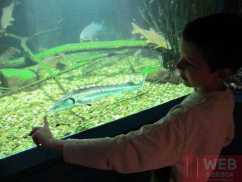 Аквариум Морского музея Вены