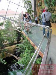 Перила - муравьиная тропа по холлу