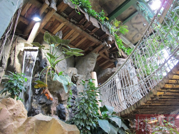 Проходы через тропические джунгли по мостах