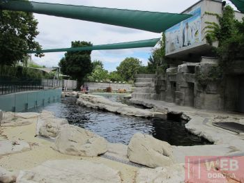Ландшафный бассейн в зоопарке Шёнбрунн
