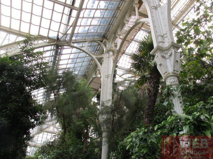 Пальмовый дом в Венском зоопарке Шёнбрунн