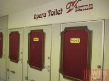 Туалет в опере Вены - кабинки