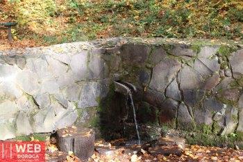 Источник с полезной минеральной водой в парке замка Шенборн