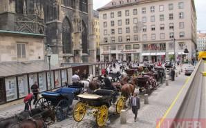 Что посмотреть в Вене — от Собора Стефана до Дунайской…