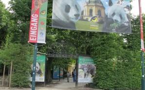 Что посмотреть в Вене — Шёнбруннский зоопарк