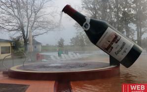 Термальные воды Косино — детальный обзор